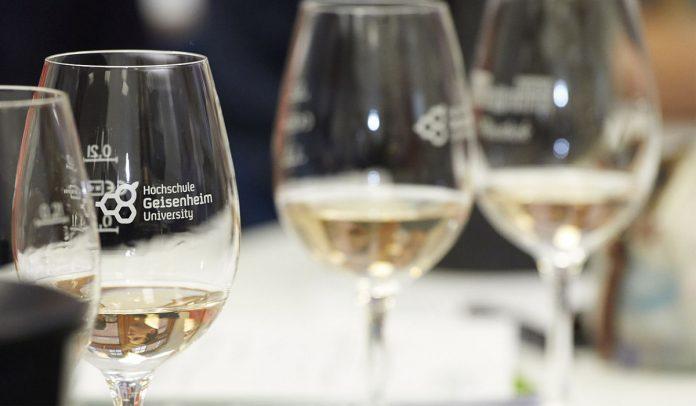 Wine.Life.Magazin – Virtuelle Realitäten in der Welt der Weinsensorik