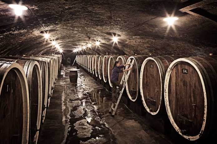 Weinkultur in Deutschland ist Immaterielles Kulturerbe